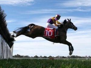 Daring tactics lead to big Sandown victory