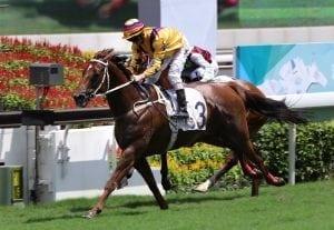 Purton opts for Winner's Way at Hong Kong season opener