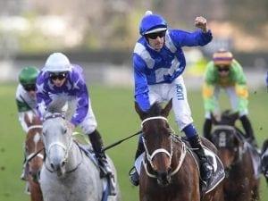 Australian mare Winx's 20 Group One wins