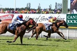 NZ mare to make Aussie debut at Caulfield