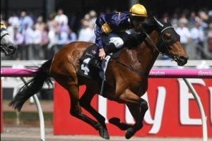 Vengeur Cups bid rest on Naturalism Stakes