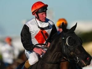 Jim Byrne booking a boost for Stella Ombra