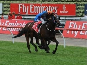 VRC keen for a local win in Melbourne Cup