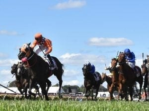 Ace High could take on Winx in George Main