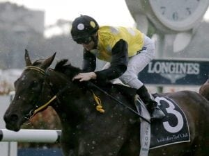 In Her Time on track for The Everest