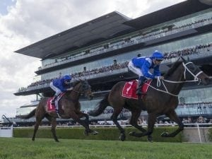 Winx taking aim at Group One win No.20