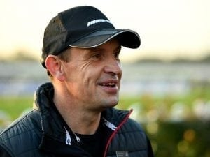 Winx picture perfect for Main: Waller