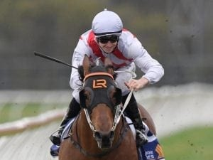 Golden chance for Lees in Group One Rose
