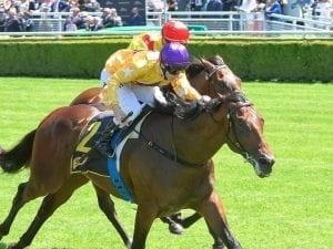 Santos on quick back-up in Golden Rose