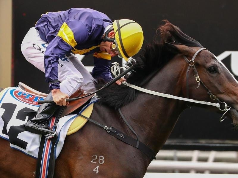 Grunt wins the Makybe Diva Stakes.