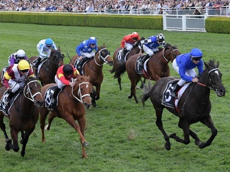 Avilius (right) wins at Randwick.