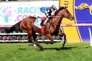 Out-of-form Weir runner targets NZ Group 1
