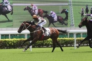 Romantic Touch leads a Sha Tin treble for a new alliance