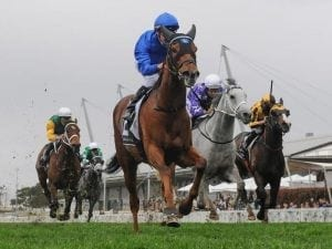 Home Of The Brave wins Theo Marks Stakes