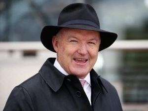 Hayes expects trio to be competitive in G1