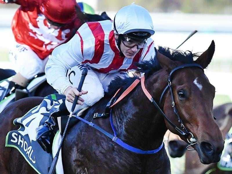 Shoals winning the Morphettville