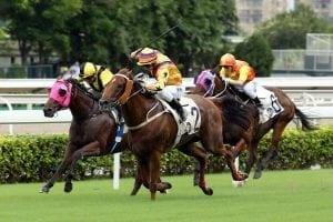 Purton's Way is a Winner in the HKSAR Chief Executive's Cup