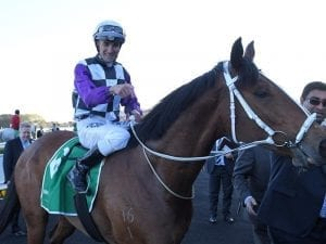 Patrick Erin gets Cups penalty for G1 win