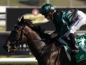 Newnham chasing first Group One win