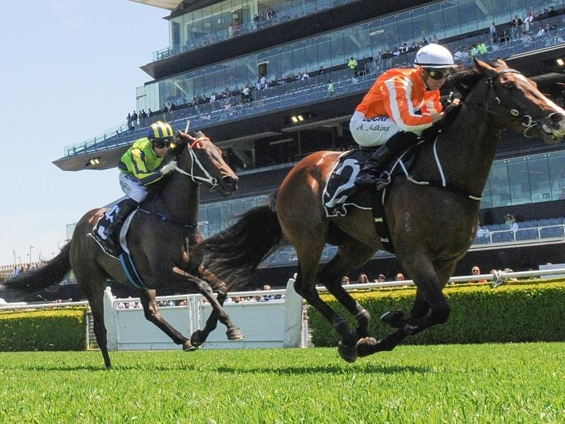 Royal Celebration wins at Randwick.