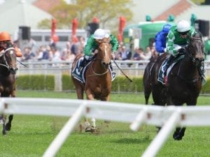Catch Me impressive in Gimcrack Stakes win