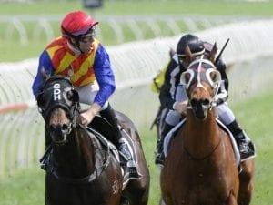 Pierata grabs Randwick consolation prize