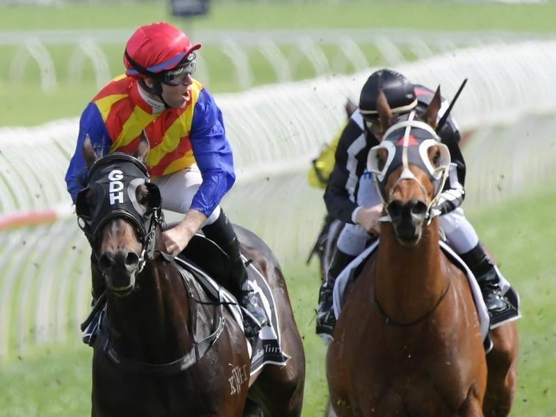Pierata wins the Sydney Stakes.