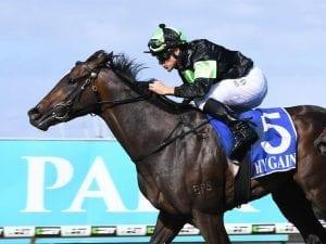 Brisbane colt Sesar to make Sydney debut