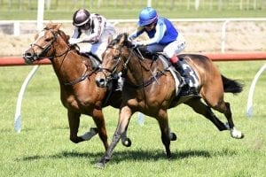 Emily Margaret out to maintain winning groove