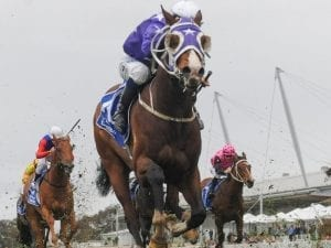 Dealmaker out to emulate sire in Group One