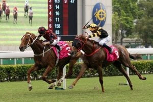 Sha Tin Group 2 Jockey Club Cup