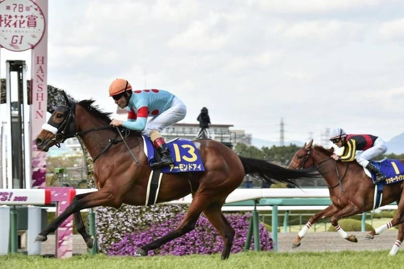 Grade 1 Japan Cup preview | Horse Betting