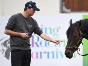 Prince, Fellowes chase Melbourne Cup glory