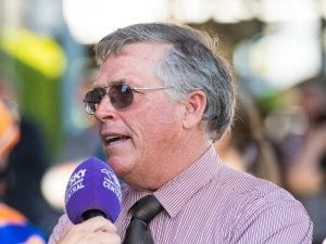 Consistent Tregea horses after stakes wins