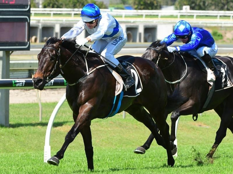 Brad Stewart rides Zoustyle to victory in race 5 at Doomben
