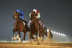 Sharaf Al Reef takes Liwa Oasis in Abu Dhabi season finale
