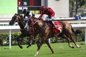 Track record for Eagle Way as big guns burn out in Jockey Club Cup