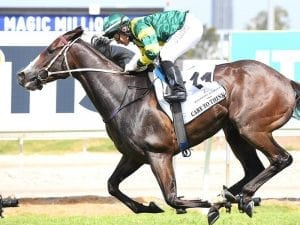 Matt Dunn happy with stable star's trial