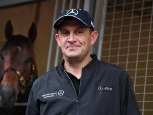 Chris Waller leads the way during spring
