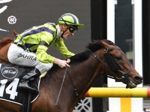 Cup runners to back up in Zipping Classic