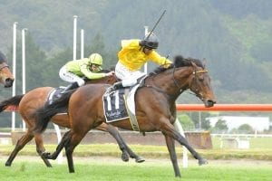 High Spirits scratched from Cup