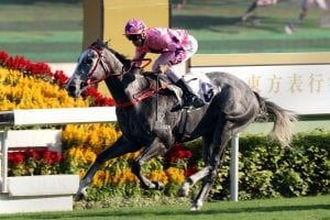 Size takes in Hot hand into Sunday's G2 Jockey Club Sprint