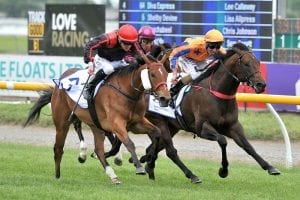 Miss Federer wins at Riccarton