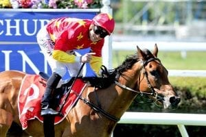 Karaka Million 3YO could be next target for 2000 Guineas winner