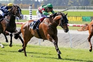 Picket fence form on the line at Riccarton