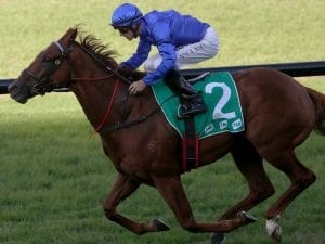 Ex-Godolphin runners a hit with McFarlane