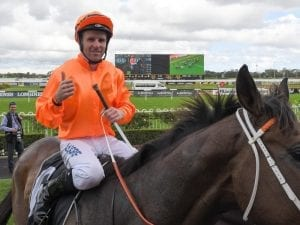 Winners keep it in the family at Rosehill