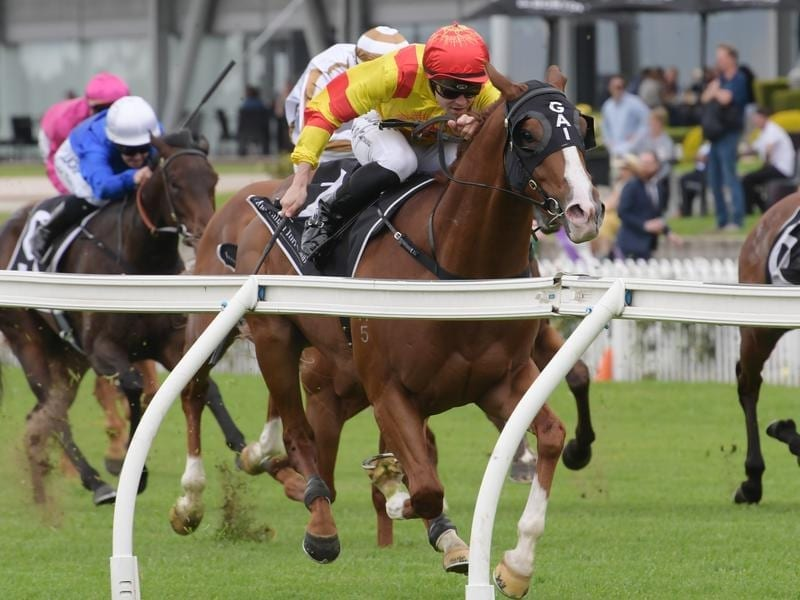 Adam Hyeroninmus rides Chess Star to victory in race 1 at Rosehill