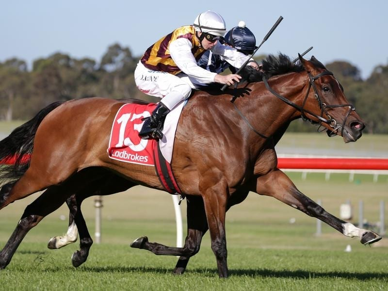 Damian Lane rides I'm a Princess to win race 10 at Sandown