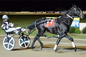 Tiger Tara heads into Inter Dominion as top seeded pacer